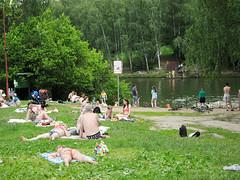 IMG_5716 (Бесплатный фотобанк) Tags: ландшафтный заказник тёплыйстан зонаотдыха тропарёво парк пляж загорают отдых знак купатьсязапреще купатьсязапрещено россия москва