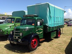 Bedford Truck (1952) 3519cc (andreboeni) Tags: british classic commercial vehicle truck lorry bedford oldtimer