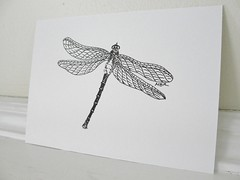 Dragonfly wings (mbrichmond) Tags: dragonflies originalart insects inkdrawings smalldrawings dragonflyart dailydrawings insectart capecodart dragonflydrawings naturedrawings insectdrawings blackandwhitedrawings naturesketches maryrichmond