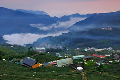 The Little Village , (Vincent_Ting) Tags: sunset sky clouds taiwan  formosa  jiayi   seaofclouds alisan    teafield