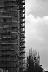 Hide and Create (Kornelis Fragakis) Tags: white black building tree raw hide create groningen build kornelis fragakis