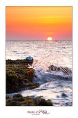 Acariciada por el Mar (Pedro J. Zamora) Tags: ray paisaje amanecer sing gaviotas inverso salidadelsol a850 sonyalpha cabohuertas pedrojzamora