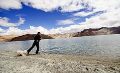 Vodafone Doggy... (Prabhu B Doss) Tags: china travel blue portrait dog india lake green landscape fun three nikon women turquoise indian tibetan idiots ladakh indochina pangong ladakhi prabhub prabhubdoss d7000 3idiotslake zerommphotography 0mmphotography