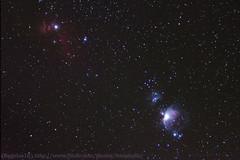 Orion Horsehead Flame Nebulas (Regulus12) Tags: stars space nebula astrophotography m42 astronomy horsehead deepspace orionnebula flamenebula Astrometrydotnet:status=solved Astrometrydotnet:version=14400 Astrometrydotnet:id=alpha20120363513303