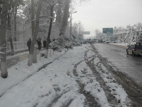 Последствия снегопада в Курган-тюбе (8)