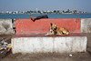Bench - Diu, India (Maciej Dakowicz) Tags: sea people dog india bench person asia leg promenade phototrip diu
