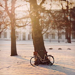 Sun glows for a day, candle for an hour, matchstick for a minute but a good day can glow forever. (www.juliadavilalampe.com) Tags: morning trees white snow cold bike denmark bokeh getty danmark odense gettyimages fototomadapormaridoyeditadapormi