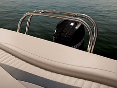 Sunchaser Pontoon Optional Ski Tow (thebestboatbrands) Tags: cruise fish ds 820 pontoon 2012 options 818 ds20 ds22 sunchaser 8522 8520 ds24 oasiscruise 8522cnf 85204pt 8204pt oasisfish 8224pt 820fnc 8524lounger 8522lounger