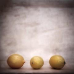 79/366 Three Lemons (skyeboatsong) Tags: inspiration painterly blur coffee yellow fruit painting three lemon soft background inspired lemons burn cardboard dodge fiveaday homemadetexture homemadebackground ayrps