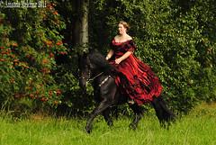 28 (amable) Tags: horses horse black dress princess feathers bond contact andalusian buckskin friesian horsemanship naturalhorsemanship prance clickertraining tricktraining valkfriesandalusierbandmetjepaardpaarden castellkasteeljonkvrouwearmyprinsesjurk