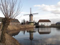 Kilsdonkse molen (Heeswijk-Dinther) (ToJoLa) Tags: winter cloud reflection nature canon landscape mirror natuur molen 2012 landschap noordbrabant wilg heeswijk reflectie watermolen canong10 kilkdonksemolen