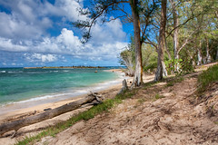 MALAEKAHANA BEACH (boydbrooks999) Tags: travel blue vacation green beach nature clouds palms island hawaii bay big sand paradise pacific oahu getaway relaxing calm retreat shade hawaiian mauna kea aloha sunbathing tradewinds oceanbreeze windwardside malaekahanastaterecreationarea