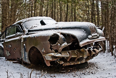 What lurks in the woods? (Kim Kurtz) Tags: auto ontario abandoned rust junkyard scrapyard wreckers mcleans rottingaway mcleansautowreckers kimkurtzphotography professionalphotographerhamilton