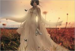 Teagan~Dreamy Days (Skip Staheli (Clientlist closed)) Tags: model avatar meadow sl secondlife romantic dreamy skipstaheli