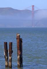 Golden Gate Bridge, San Francisco, California, USA (Thierry Hoppe) Tags: sanfrancisco california usa detail fog bay goldengatebridge