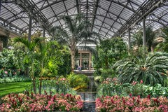 Longwood Gardens HDR (Tim Loesch) Tags: flower gardens pennsylvania pa greenhouse longwoodgardens hdr longwood kennetsquare