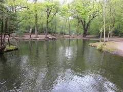 Highams Park Lake (John Steedman) Tags: uk greatbritain england lake london unitedkingdom highamspark grossbritannien     grandebretagne    highamsparklake