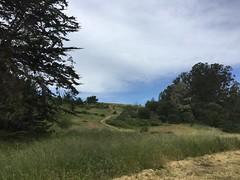 Cambria Hike (tiny red warrior) Tags: california walk roadtrip hike cambria santarosacreektrail