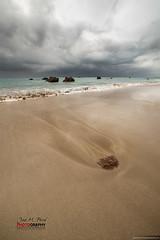 Alga #001 (Jose M. Peral) Tags: espaa primavera vertical mar agua europa playa arena nubes nublado rocas cantabria algas orilla cantbrico marrn noja