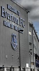 Everton vs Norwich, Final game of 2015/2016 season. (Scorgie95) Tags: liverpool football premier toffee league efc everton goodisonpark goodison toffees