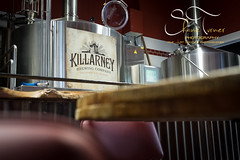 Killarney Brewing Company By Shane Turner Photography (Shane M Turner) Tags: county ireland irish history brewing photography tour natural beers photos shane lakes kerry best company killarney excellent tours turner tralee distillary wwwshaneturnerphotographycom
