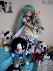 Kashi (Ushi de Bray) Tags: anime cat toy cow chat doll teddy dream manga kitty mini cuddly groove sasha shinsengumi dollfie limited mayu stork toshi vache peluche poupe cigogne hijikata mdd tamano sorc kitan toshizo hakuoki