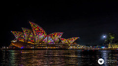 reptile (The Photo Smithy) Tags: night lights sydney australia sydneyharbour vivid2016