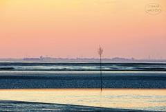 Morninglight (MaiGoede) Tags: sunrise landscape nikon meer outdoor lowtide landschaft bremerhaven ebbe niedersachsen ammeer fedderwardersiel