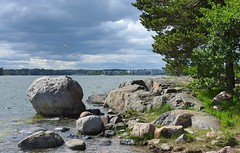 Not far from everything (KaarinaT) Tags: sea seascape bird beautiful finland harbor helsinki cloudy seagull rocky peaceful serene suburb seashore vuosaari rainandshine uutela