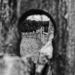 through (t s george) Tags: newengland canon5dmarkii fence