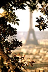 Eiffel Tower in the Autumn (Montmartre, Paris, France)