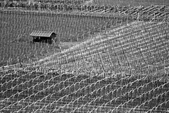 Kaltern an der Weinstrae #3 (storvandre) Tags: italy alps canon landscape eos tour 7d trentino bolzano altoadige blackwhitephotos eos7d storvandre