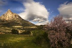 IMG_4265 Spring in the Aitana (jaro-es) Tags: españa mountains nature clouds canon spain day natur wolken natura bergen spanien montañas spanelsko eos450 pwpartlycloudy