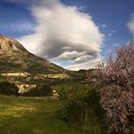 IMG_4265 Spring in the Aitana
