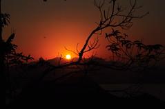 """se estiver escura D+... """"o amor, tudo te mostrará"""" (risos) (Ruby Ferreira ®) Tags: sunset brasil branches silhouettes cristoredentor christtheredeemer pôrdosol galhos parquedacidade silhuetas notreatment niteróirj morrodaviração brasilemimagens"""