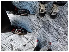 * (Dit is Suzanne) Tags: lake netherlands meer iceskating nederland m paterswoldsemeer schaatsen haren  toertocht natuurijs  paterswoldermeer views150 ditissuzanne    samsunggalaxygio 11022012 201202111617schaatsen