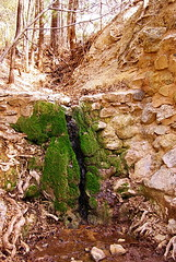 Apache Spring - Fort Bowie (Al_HikesAZ) Tags: arizona usa history water project army bowie site spring apache war fort hiking country manga az hike historic national memory historical cochise cavalry usarmy chiricahua indianwars fortbowie cochisecounty apachespring azhike alhikesaz arizonamemoryproject fortbowienationalhistoricsite apachewars mangascolorado coloradocaliforniavolunteers