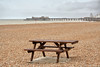 Picnic bench and Hastings Pier (larigan.) Tags: england britain everydaylife britishness larigan phamilton gettyimageswants gettywants