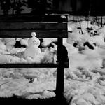 Still snowing・さらに降る雪たち 9 thumbnail