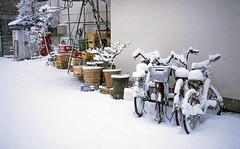 Snow in Nishi-Kokubunji by Fujifilm Klasse S & Fujifilm RDPIII (Daniel Shi) Tags: winter snow film japan tokyo fuji fujifilm kichijoji klasse rdpiii