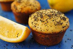 Poppy seeds/ lemon muffins (T.Monks) Tags: blue yellow breakfast dessert muffins lemon meal muffin poppyseeds