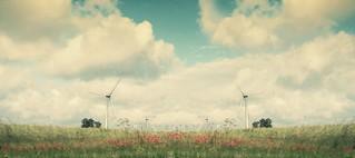 Dream of Nature