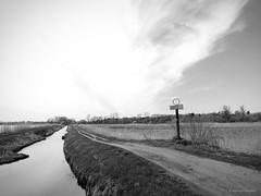 Canal, B&W (cissowski) Tags: sky sign canal spring walk poland polska olympus e3 zuiko spacer wiosna znak niebo kana cissowski zalesiedolne