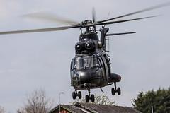 "RAF Puma ""Black Peter"" (Dan Kemsley) Tags: black mod force military air ministry royal 330 helicopter peter sa puma benson barracks beacon defense raf stafford hc1 aerospatiale of"
