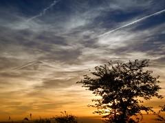 los besos que no damos...(explore) (enmafa) Tags: naturaleza atardecer cielo