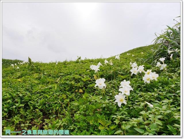 北海岸石門景點.富貴角燈塔.台灣百合.小旅行.踏青步道image027