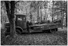 DSCF8777.jpg (Moyse911) Tags: wild nature car vw truck boats lost army fuji military traction used cox fujifilm wreck guerre perdu militaire abandonne sud armee tatra rouille urbex xf paves xe1 moyse xt1 tractionsud enfuit moyse911