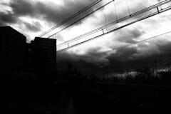 PARCELLE 16-000_192 #ciel #nuage #monochrome (gyjishukke) Tags: monochrome ciel nuage