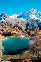 Lac bleu Arolla 16 (jfobranco) Tags: alps switzerland suisse lac wallis valais herens arolla lacbleu valdherens
