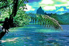 Moorea Cook Bay & Mt. Tohiea 1207 m (gerardeder) Tags: world travel french polynesia bay pacific south reise moorea bucht sdsee